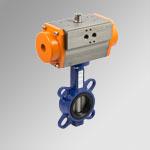 RV-FLUID BUTTERFLY CAST IRON 2 DN50 DE